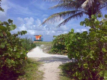 #SouthBeach #Florida